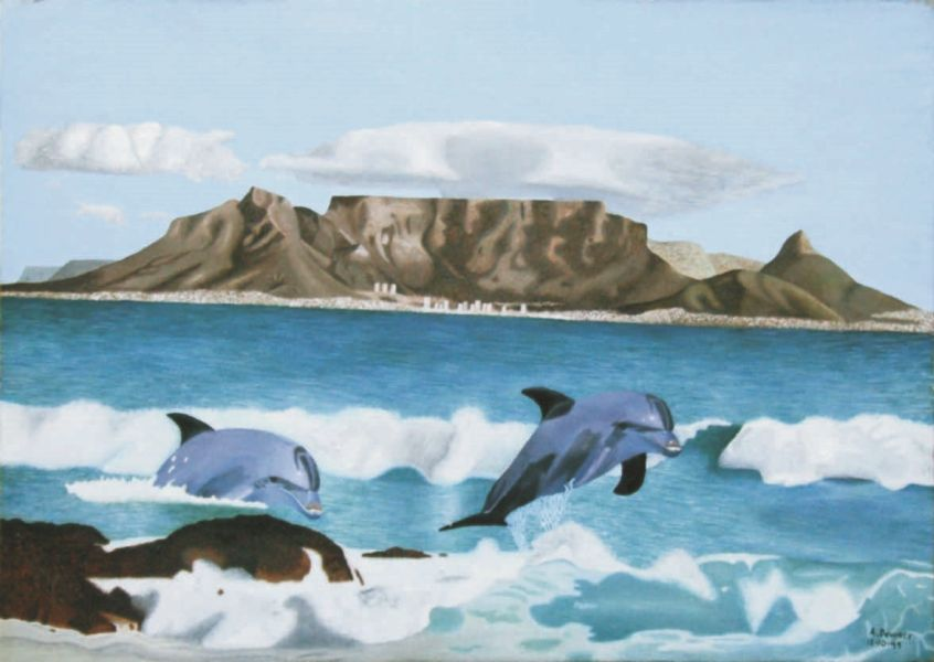 Dolphins in front of Table Mountain