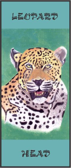 No. 4. Leopard Head