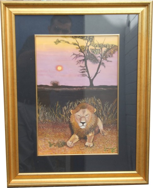 Male Lion in African Sunset